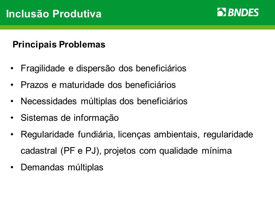 Inclusão Produtiva Principais Problemas