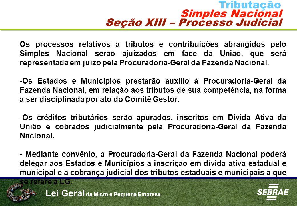 Seção XIII – Processo Judicial