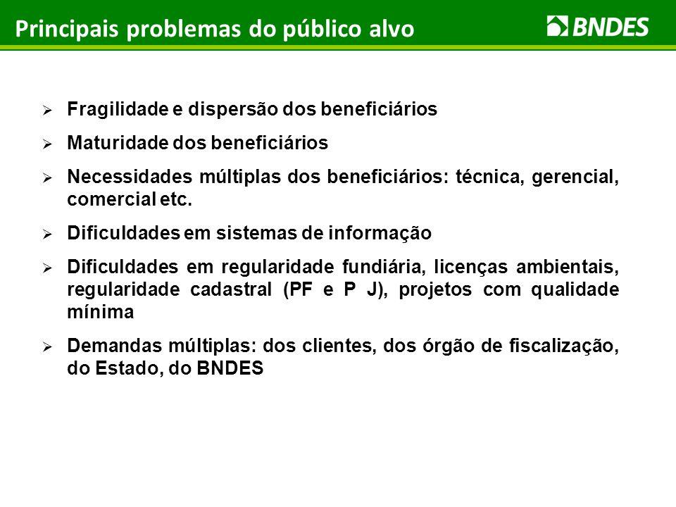 Principais problemas do público alvo