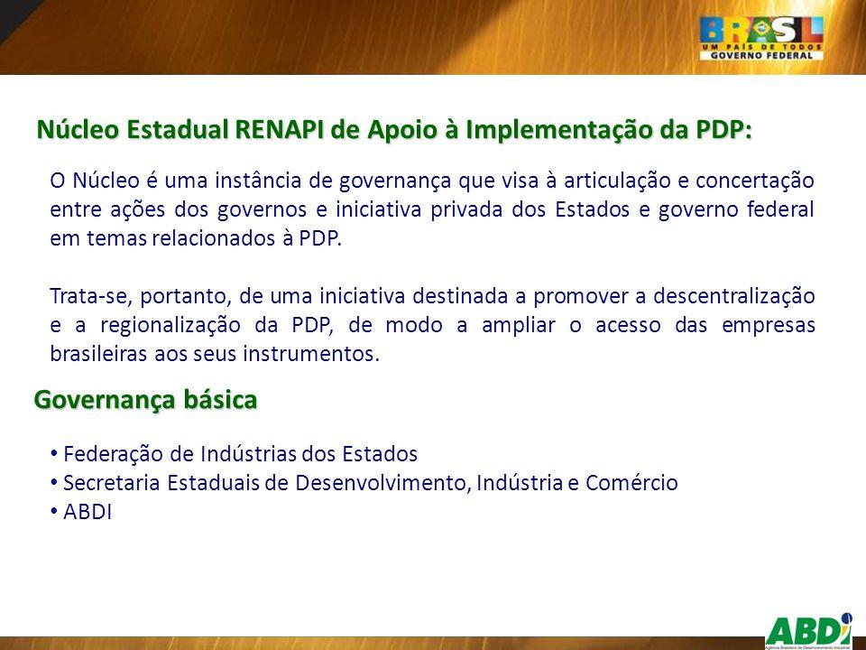 Núcleo Estadual RENAPI de Apoio à Implementação da PDP: