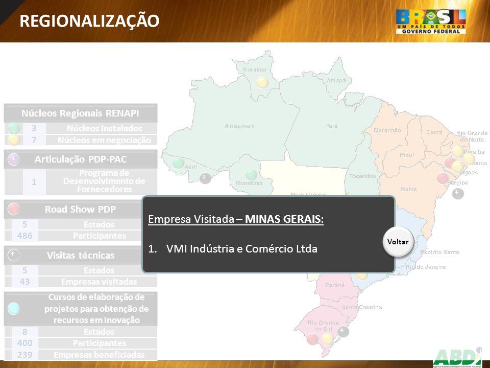 REGIONALIZAÇÃO Empresa Visitada – MINAS GERAIS: