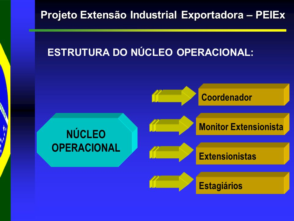 ESTRUTURA DO NÚCLEO OPERACIONAL: