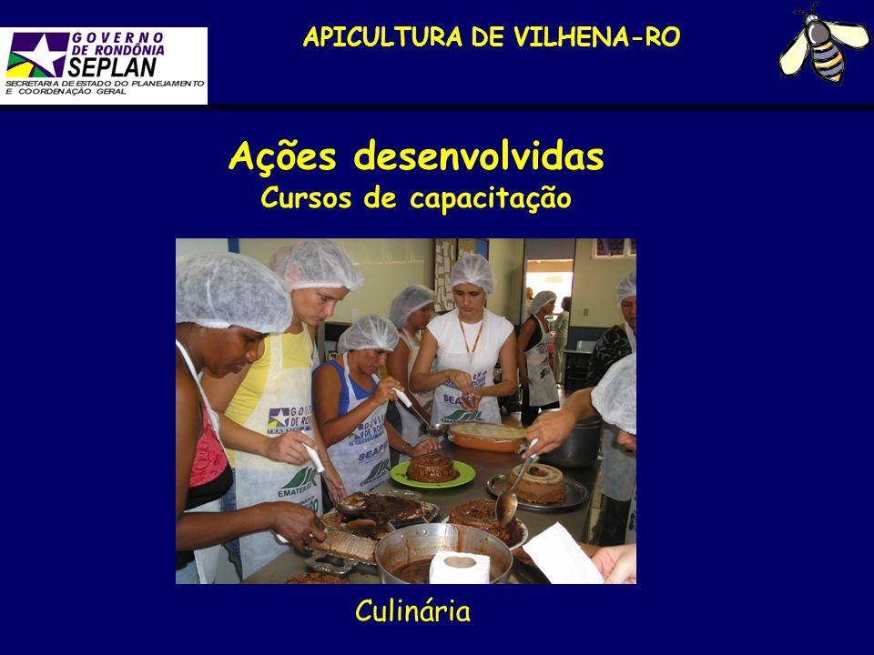 APICULTURA DE VILHENA-RO