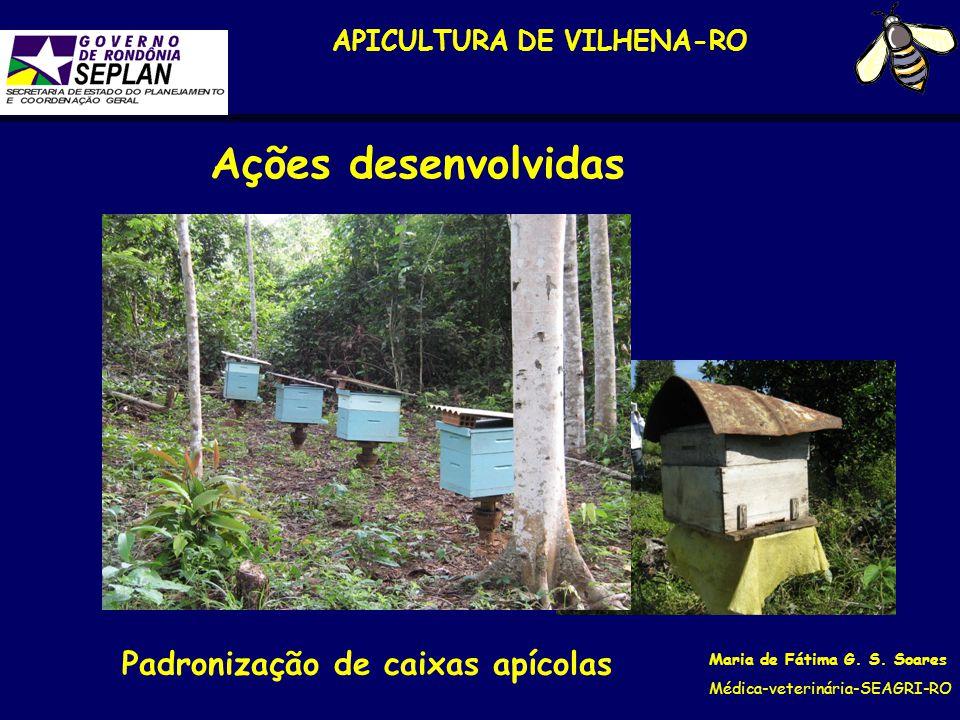 APICULTURA DE VILHENA-RO Padronização de caixas apícolas