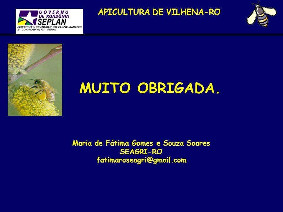 APICULTURA DE VILHENA-RO Maria de Fátima Gomes e Souza Soares