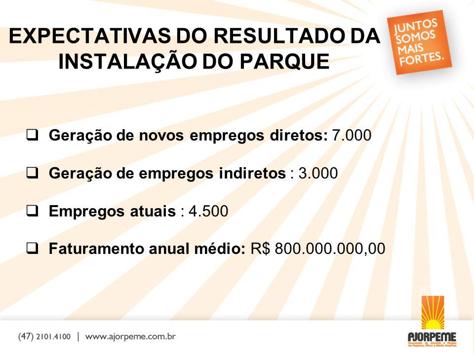 EXPECTATIVAS DO RESULTADO DA INSTALAÇÃO DO PARQUE