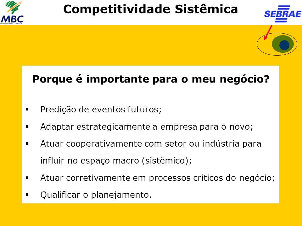 Competitividade Sistêmica