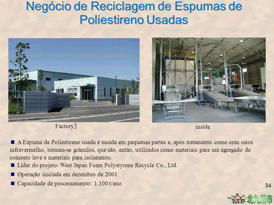 Negócio de Reciclagem de Espumas de Poliestireno Usadas