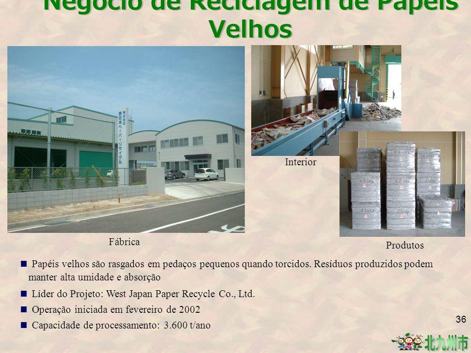 Negócio de Reciclagem de Papéis Velhos