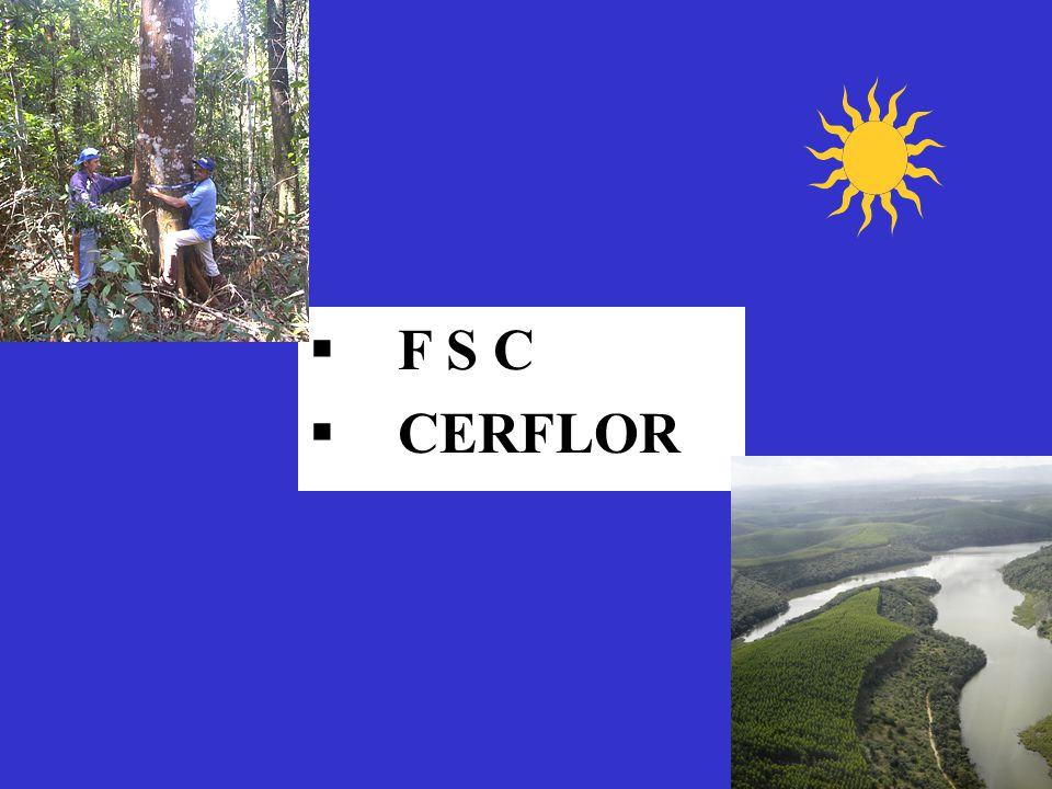 F S C CERFLOR