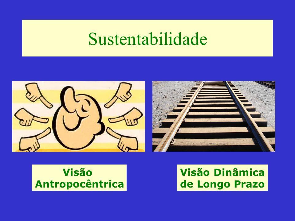 Sustentabilidade Visão Antropocêntrica Visão Dinâmica de Longo Prazo