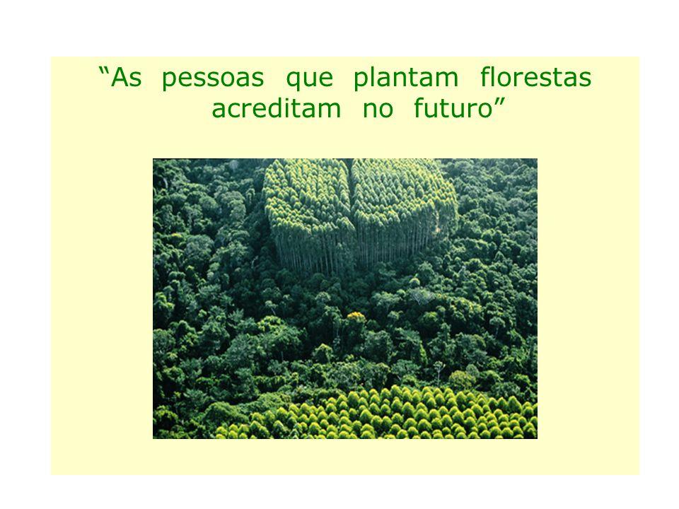 As pessoas que plantam florestas acreditam no futuro