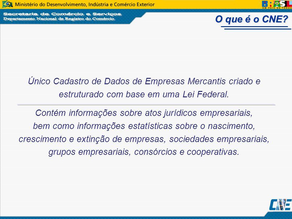 O que é o CNE Único Cadastro de Dados de Empresas Mercantis criado e estruturado com base em uma Lei Federal.