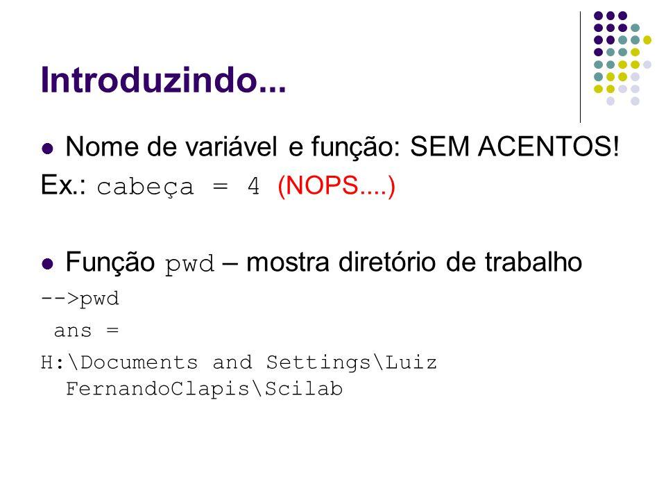 Introduzindo... Nome de variável e função: SEM ACENTOS!
