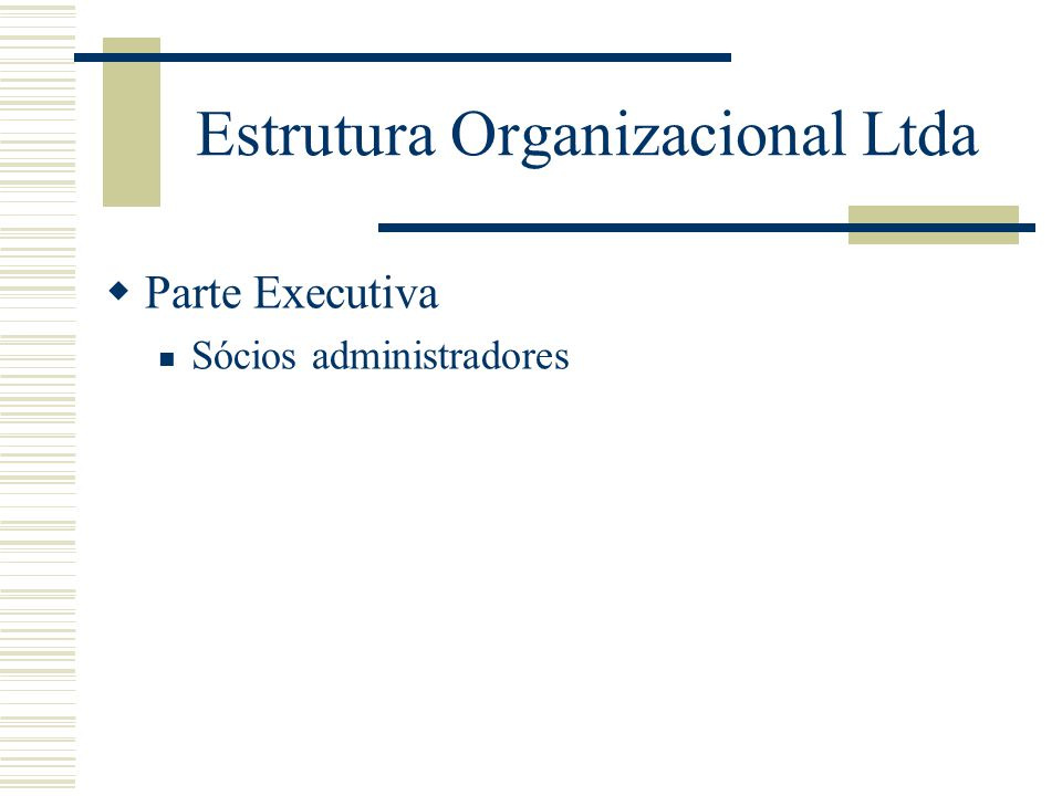 Estrutura Organizacional Ltda