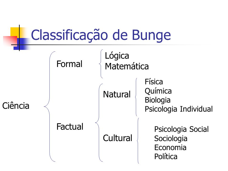Classificação de Bunge