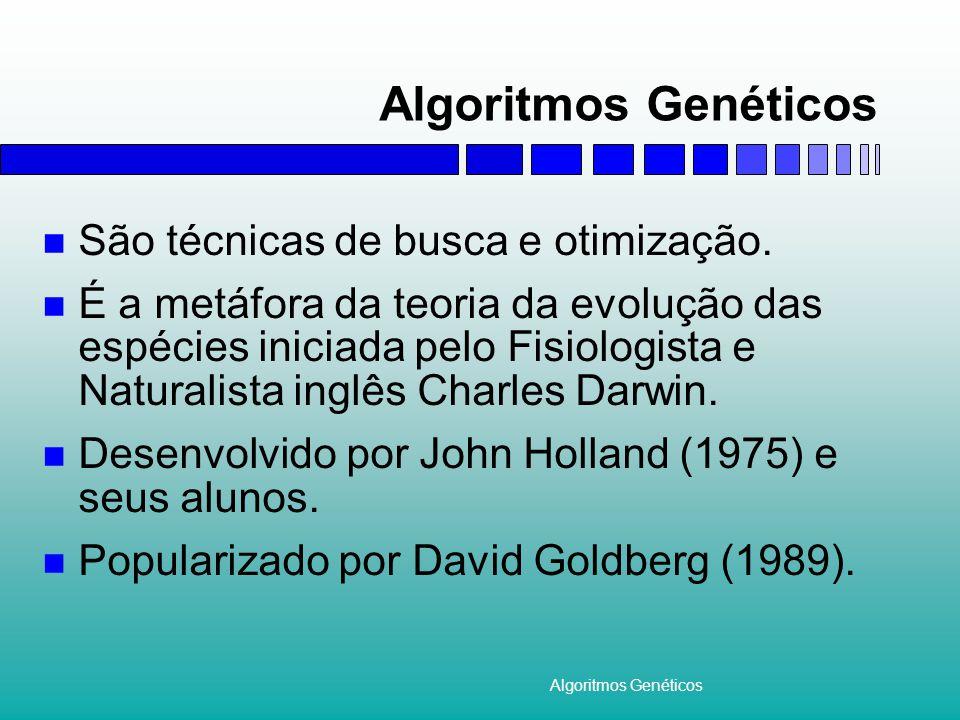 Algoritmos Genéticos São técnicas de busca e otimização.