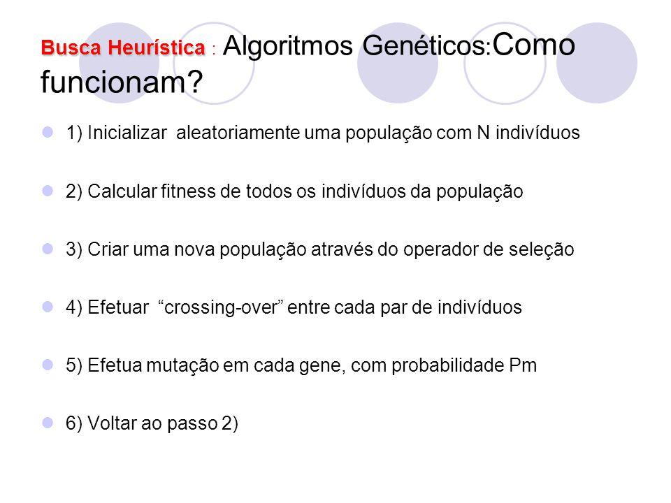 Busca Heurística : Algoritmos Genéticos:Como funcionam