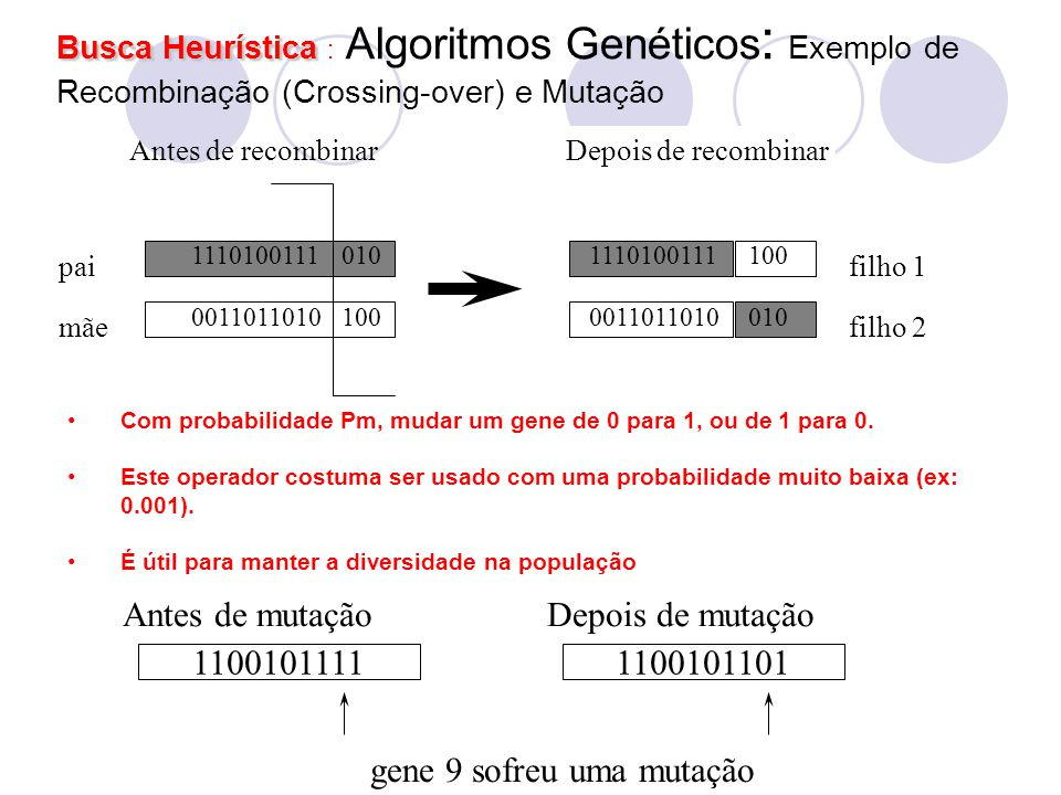 gene 9 sofreu uma mutação