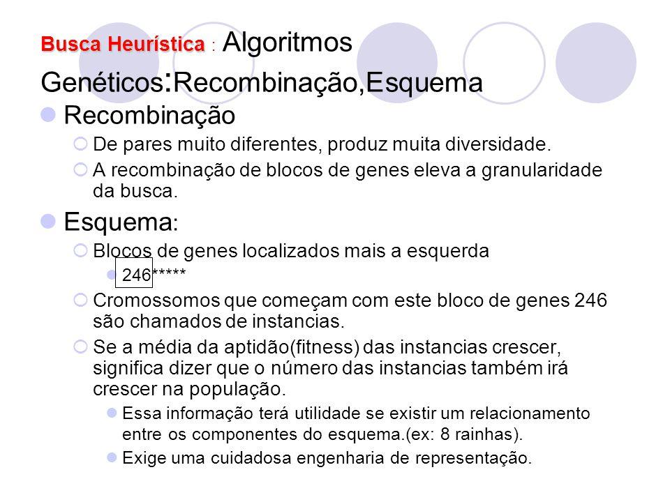 Busca Heurística : Algoritmos Genéticos:Recombinação,Esquema