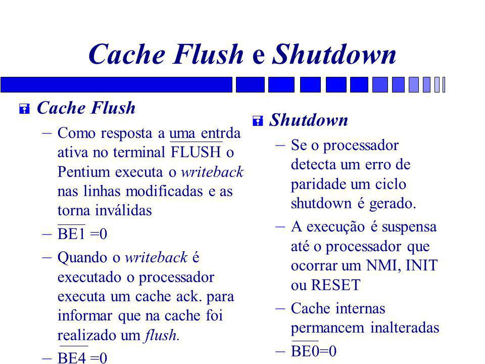 Cache Flush e Shutdown Cache Flush Shutdown