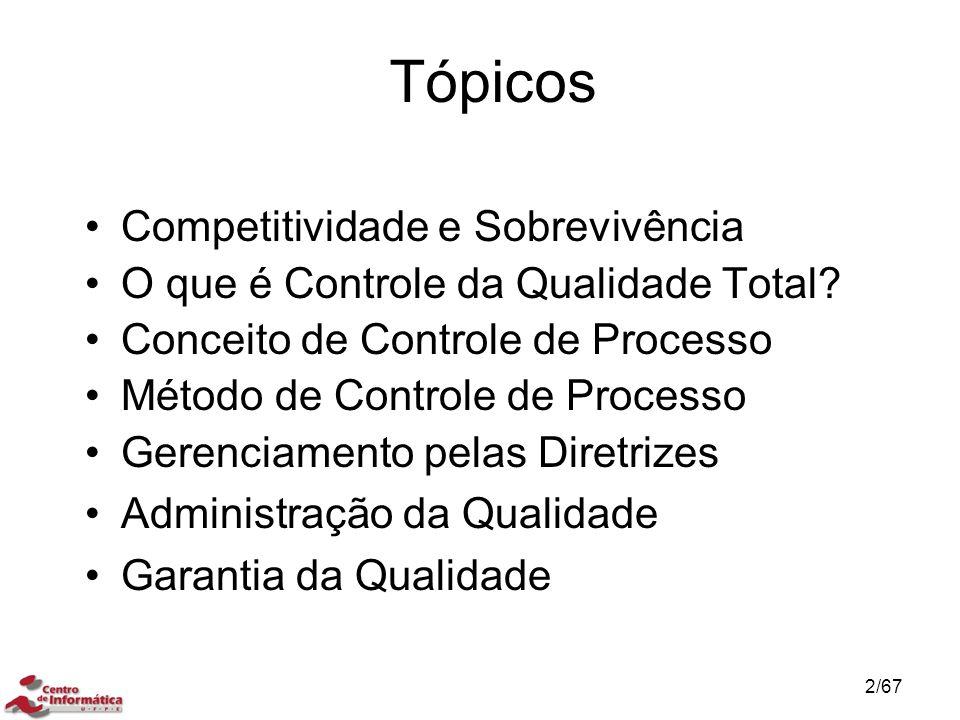 Tópicos Competitividade e Sobrevivência