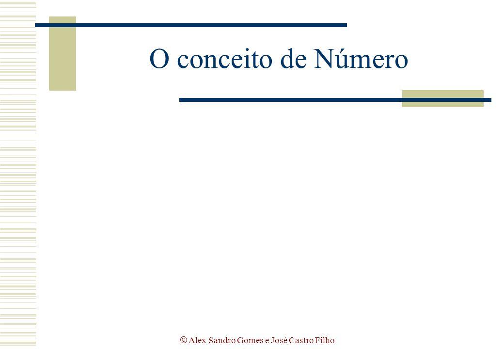 © Alex Sandro Gomes e José Castro Filho