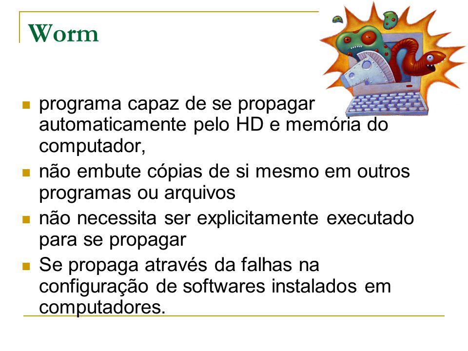 Worm programa capaz de se propagar automaticamente pelo HD e memória do computador, não embute cópias de si mesmo em outros programas ou arquivos.