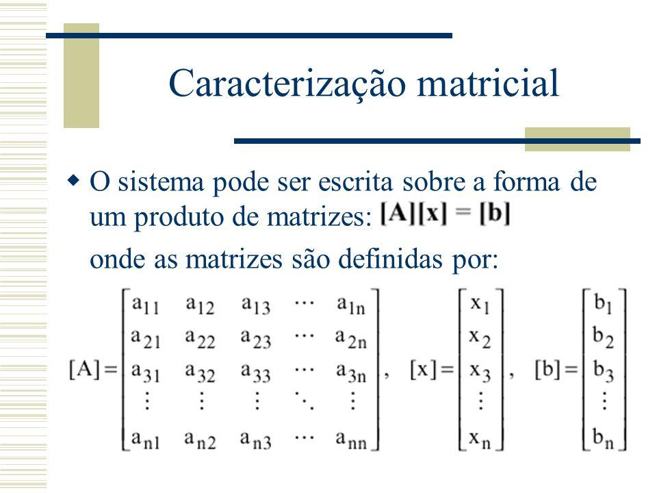 Caracterização matricial