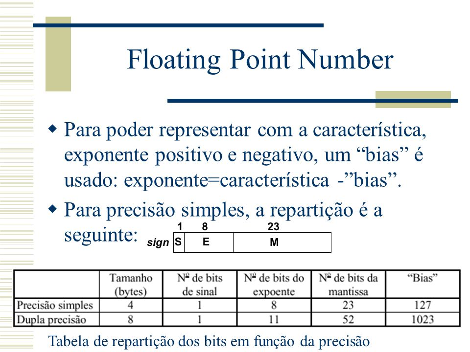Floating Point Number