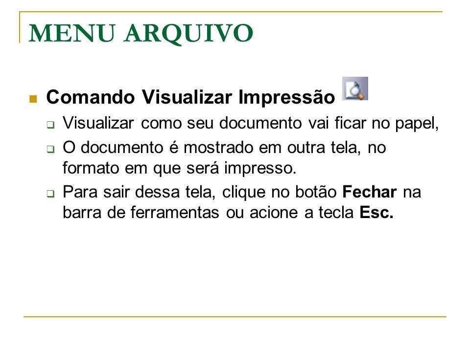 MENU ARQUIVO Comando Visualizar Impressão