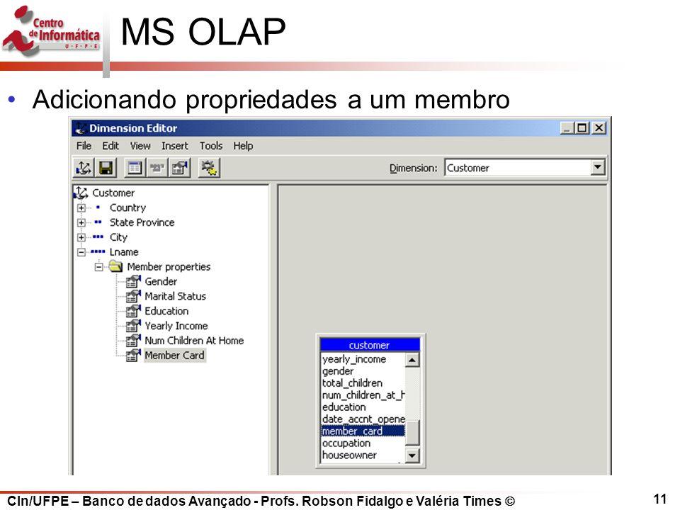MS OLAP Adicionando propriedades a um membro
