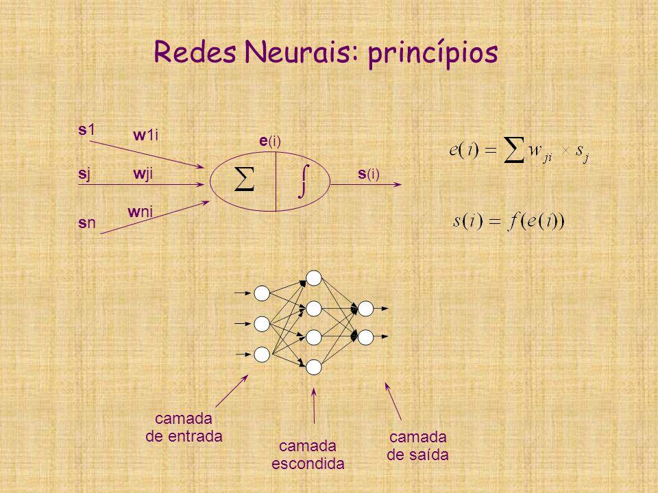 Redes Neurais: princípios