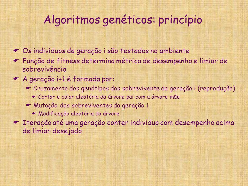 Algoritmos genéticos: princípio