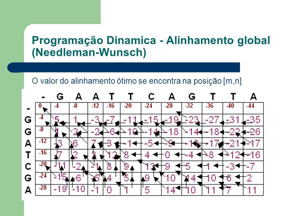 Programação Dinamica - Alinhamento global (Needleman-Wunsch)