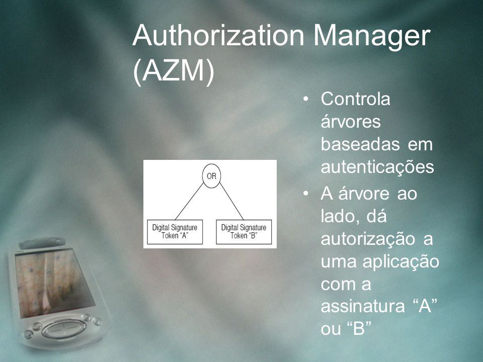 Authorization Manager (AZM)