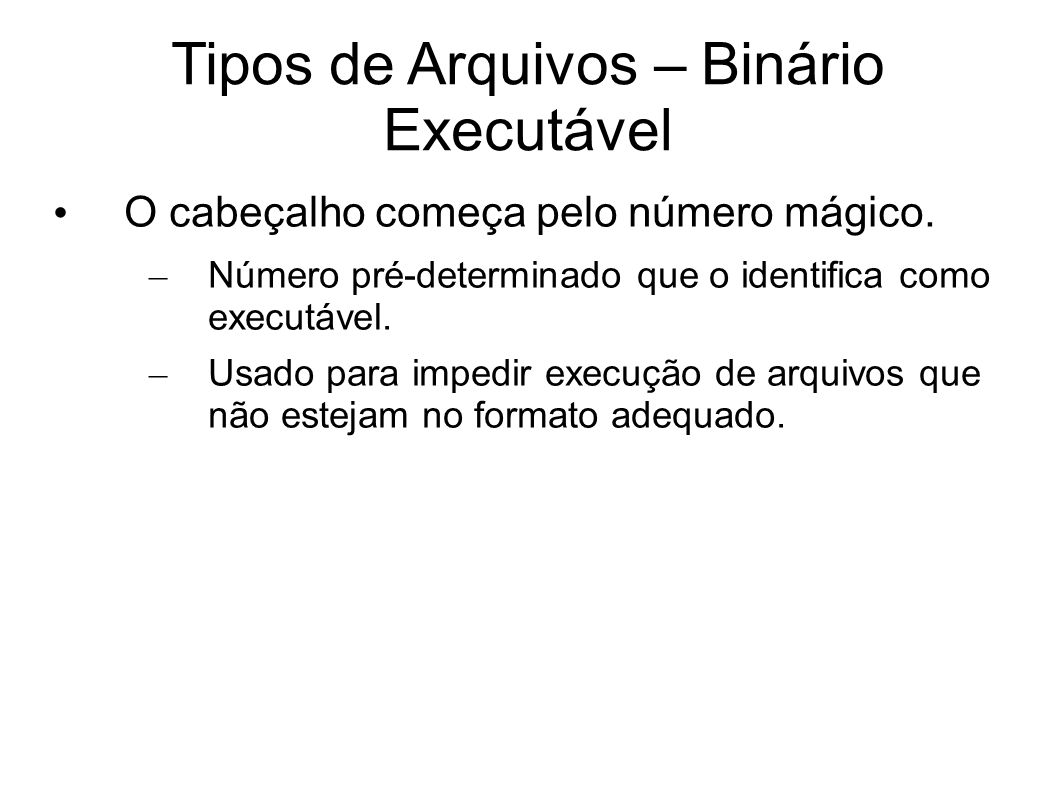 Tipos de Arquivos – Binário Executável