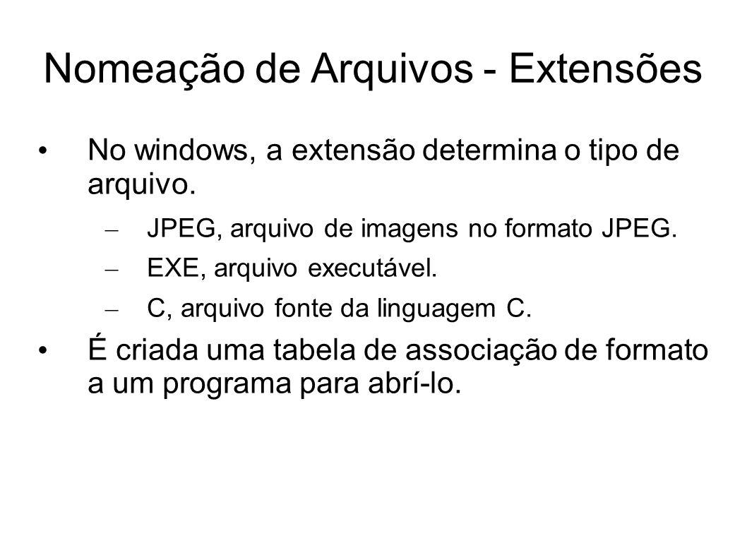 Nomeação de Arquivos - Extensões