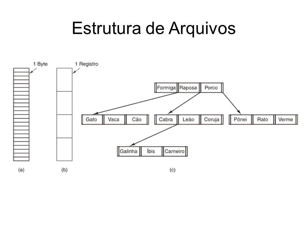 Estrutura de Arquivos 9