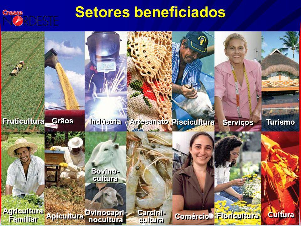 Setores beneficiados Fruticultura Grãos Indústria Artesanato