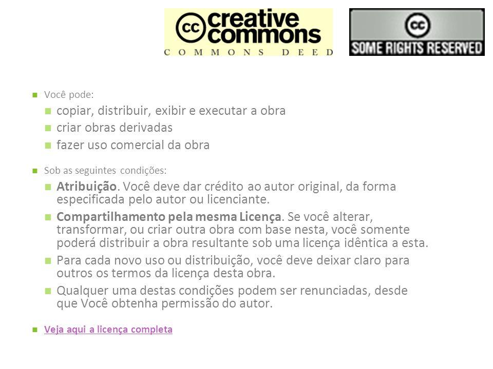 copiar, distribuir, exibir e executar a obra criar obras derivadas