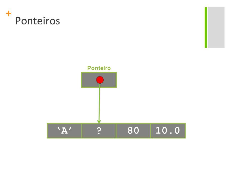 Ponteiros Ponteiro 'A' 80 10.0
