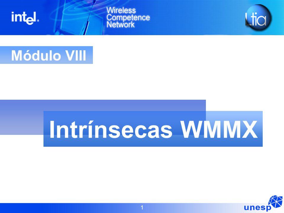 Intrínsecas WMMX Módulo VIII