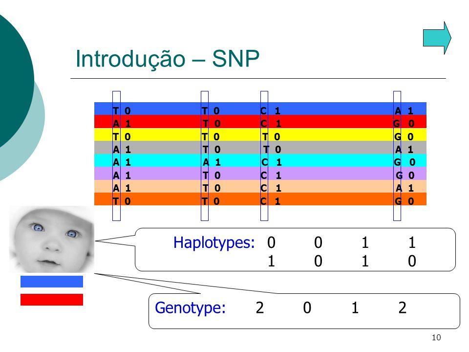 Introdução – SNP Haplotypes: 0 0 1 1 1 0 1 0 Genotype: 2 0 1 2