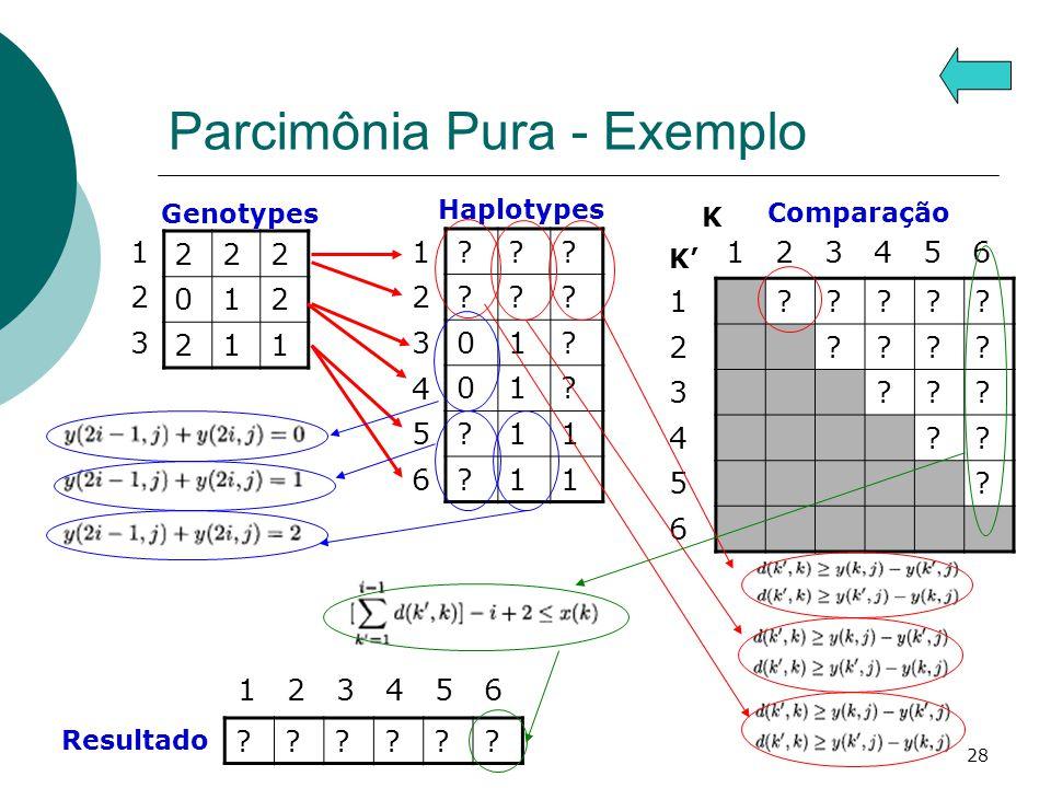 Parcimônia Pura - Exemplo