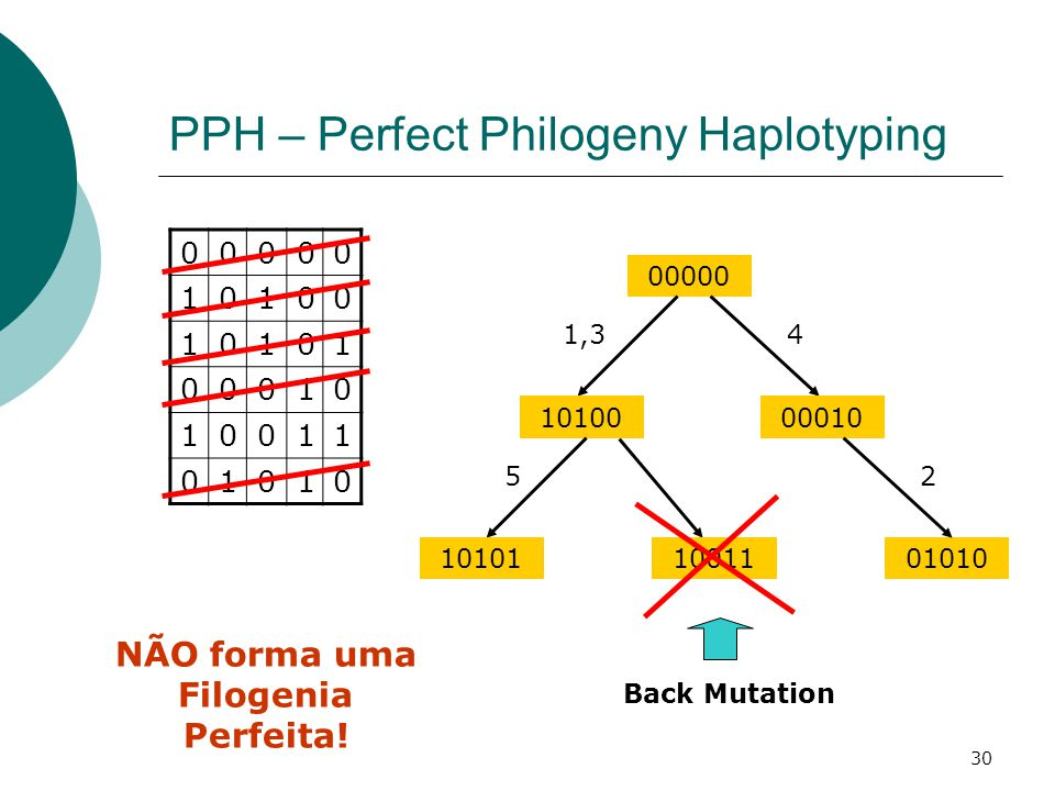 PPH – Perfect Philogeny Haplotyping