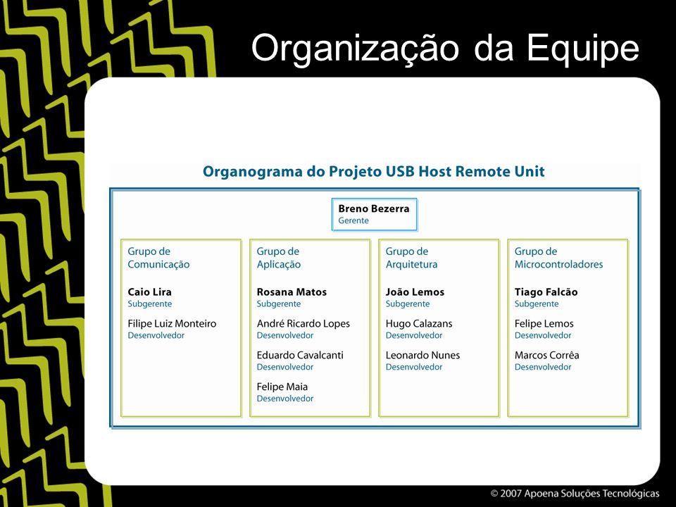 Organização da Equipe