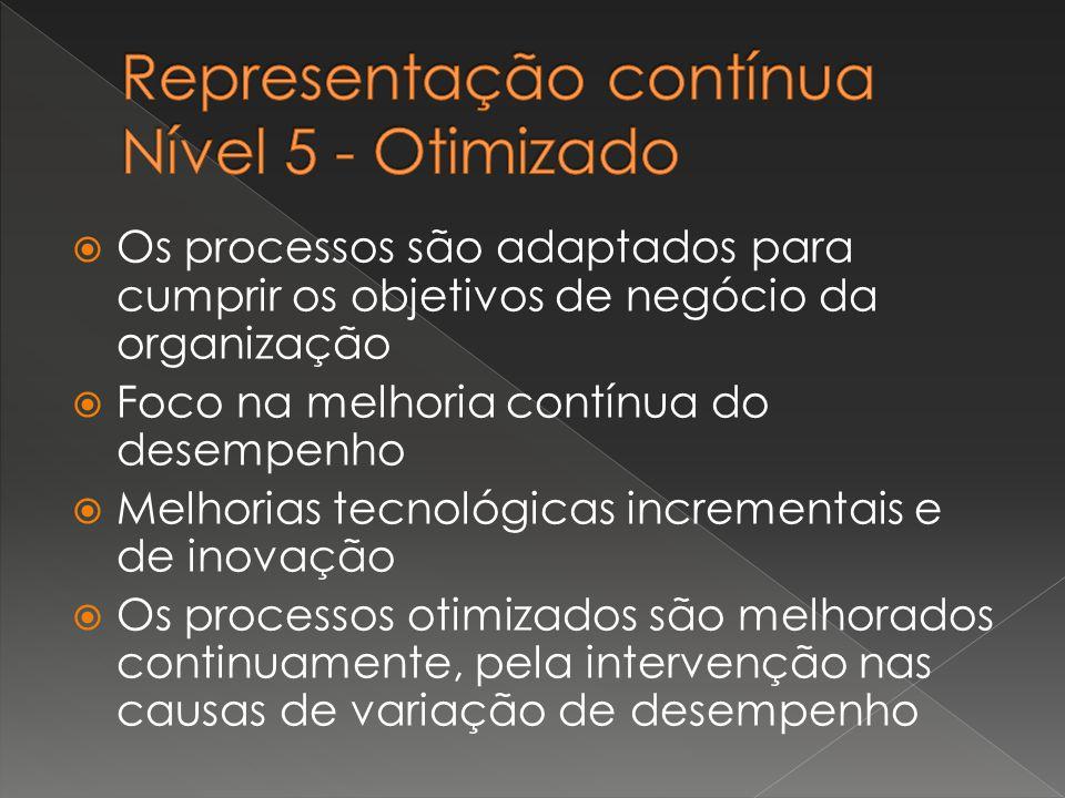 Representação contínua Nível 5 - Otimizado
