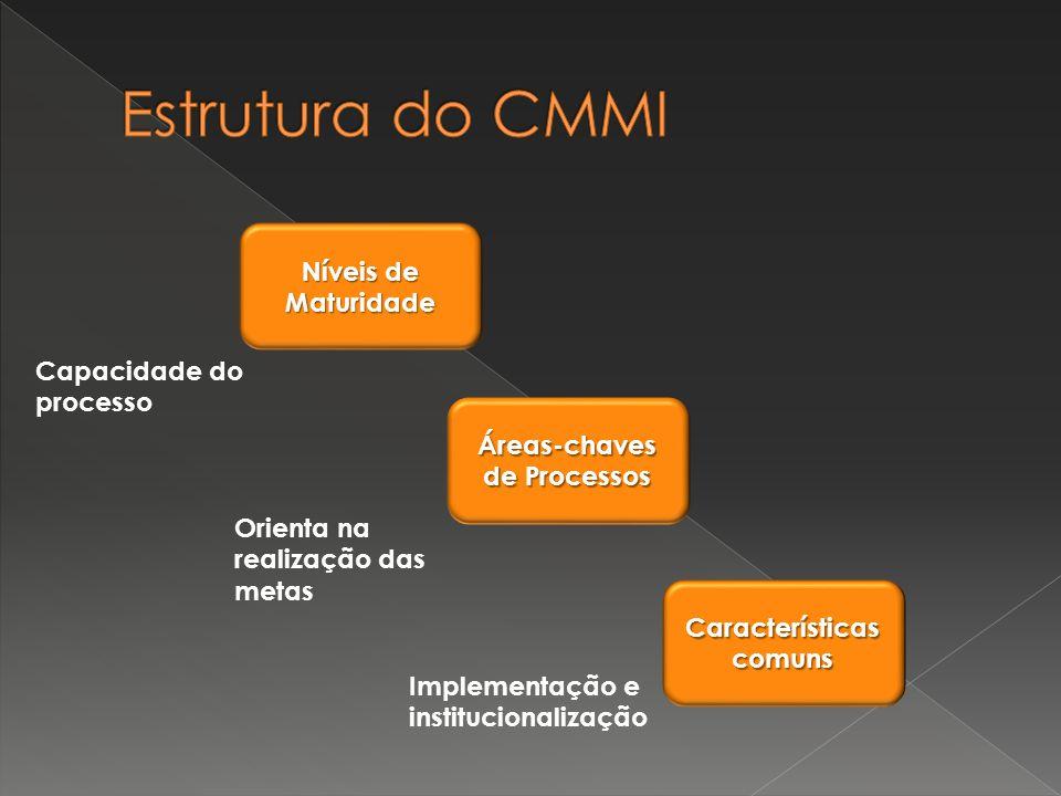 Áreas-chaves de Processos Características comuns