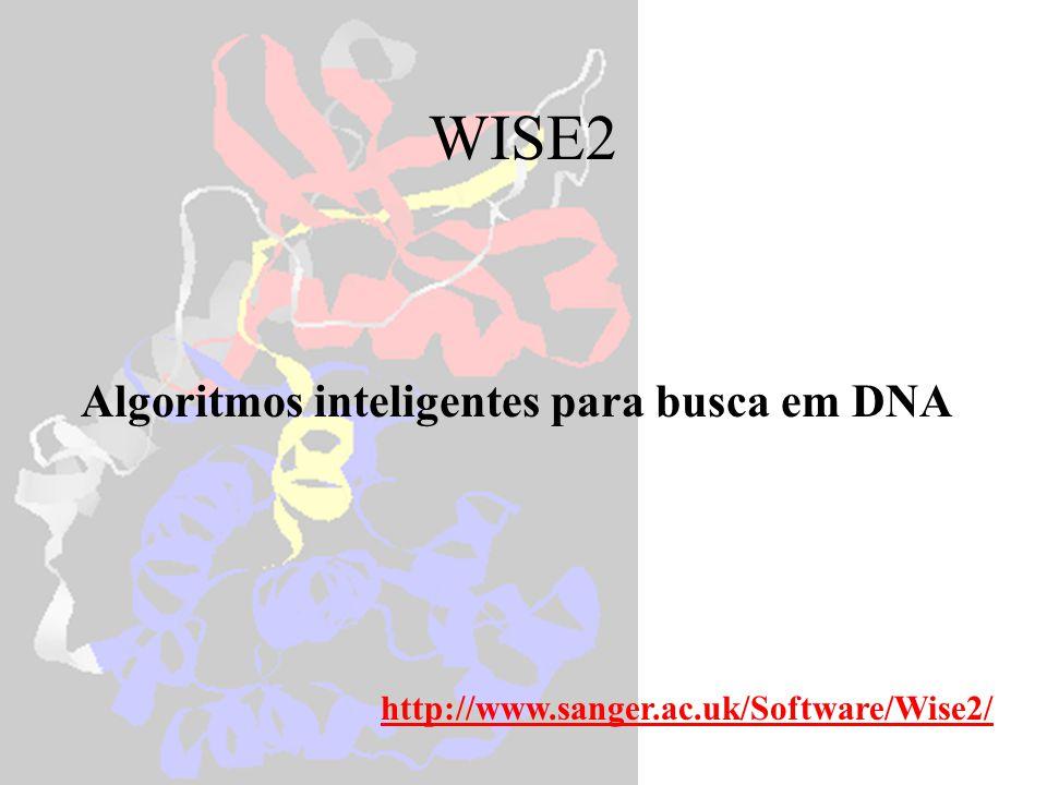 WISE2 Algoritmos inteligentes para busca em DNA